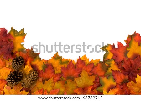 Fall leaves and pinecones isolated on a white background, fall border