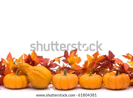 Fall Leaves and pumpkins as a border isolated on white, Autumn border - stock photo