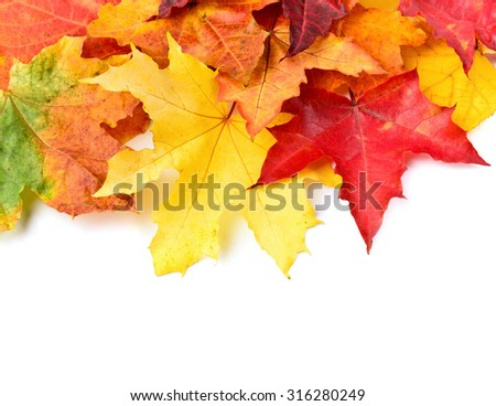 Fall leaves background with copy space