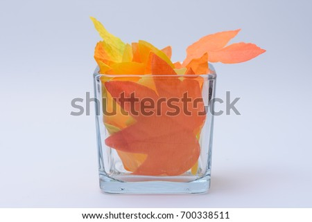 Fall leaves in square glass with room for copy text