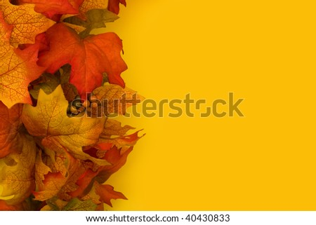 Fall leaves making a border on a yellow background, fall border