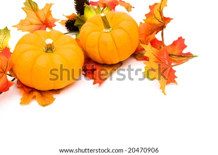 Fall leaves with orange gourd on white background, fall border
