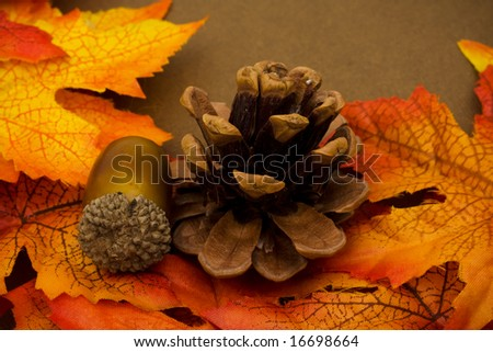 Fall leaves with pinecone and acorn on brown background, fall background - stock photo