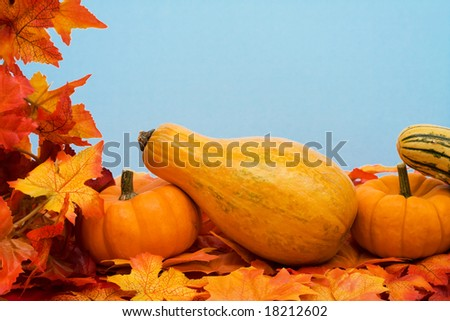 Fall leaves with pumpkin on blue background, fall harvest frame
