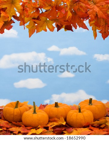 Fall leaves with pumpkin on sky background, fall harvest