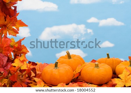 Fall leaves with pumpkin on sky background, fall harvest frame