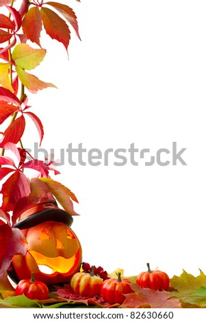 Fall leaves with pumpkin on white background - stock photo