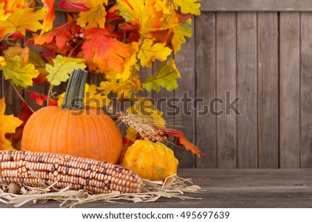 Fall pumpkin, squash and corn with colorful leaf decoration in background