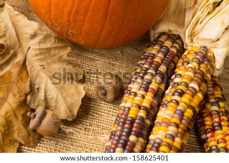 Fall scene of pumpkin, Indian corn acorns and leaves - stock photo