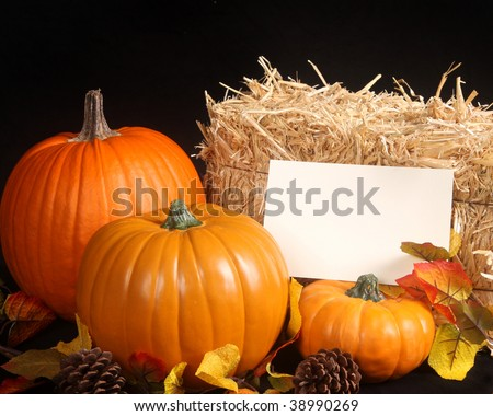 Fall scene with pumpkins on a black background