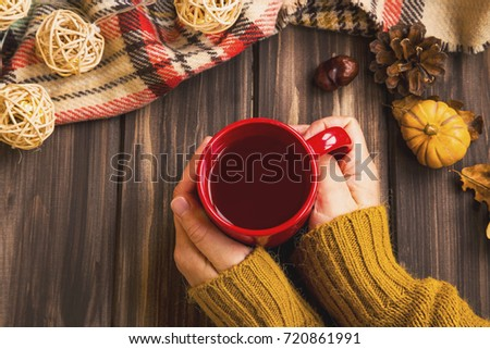 Fall setting woman hands holding hot tea cup with vintage fall blanket on wooden background and pumpkin deco,cozy autumn flat lay setting