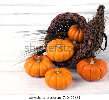 Fall Thanksgiving Cornucopia filled with Many Mini Pumpkins on Rustic White Board table and background with room or space for copy, text or words.  It's horizontal crop with normal side view.