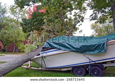 fallen tree crushing a power boat - stock photo