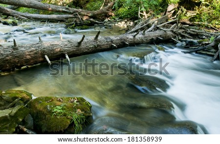 Fallen tree over blurred valley stream. - stock photo