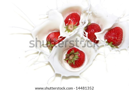 Falling a strawberry with milk splashes - stock photo