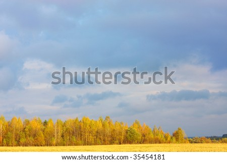 falling landscape - stock photo
