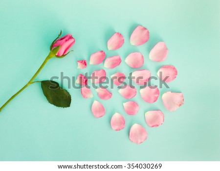 Falling petals of a pink rose on green background. - stock photo
