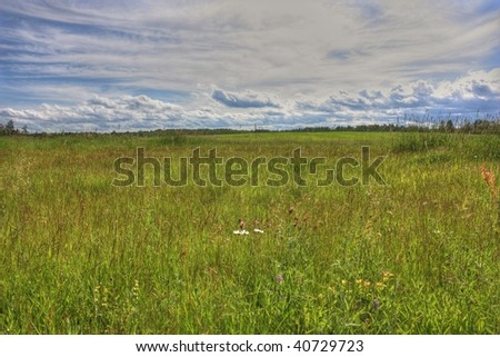 Fallow hayfield - stock photo