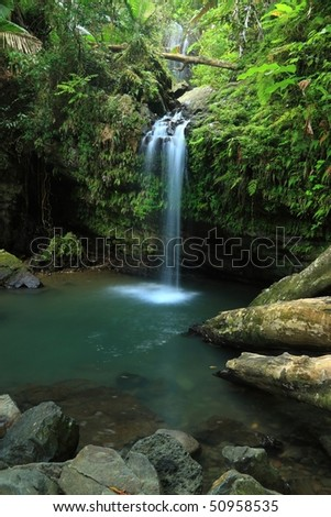 Falls and pool on Cascada Juan Diego in the El Yunque rainforest in the Caribbean National Forest, Puerto Rico - stock photo