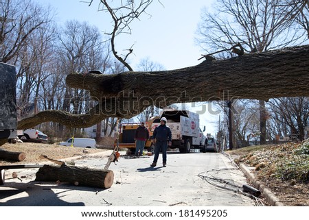 FALLS CHURCH, VA - MARCH 13: Uprooted tree removal operation after a gusty wind crossed Falls Church, VA on March 13, 2014 - stock photo