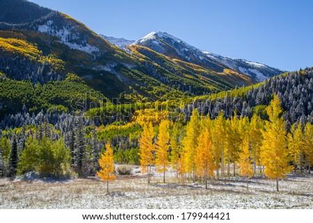 Falls color in Colorado mountain, Aspen, CO - stock photo