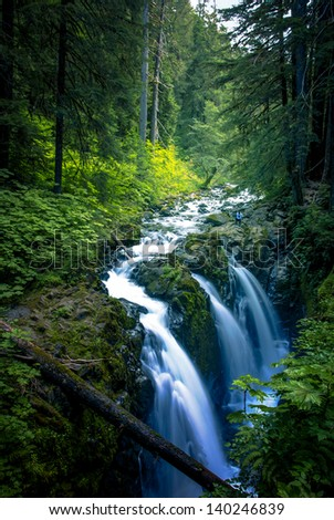 Falls in Sol Duc, Olympic National Park, WA. - stock photo