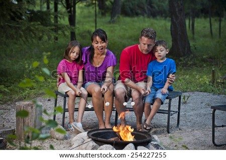 Family Campfire - stock photo