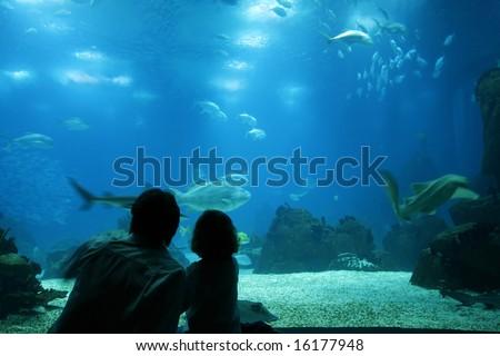 Family enjoying the underwater life at aquarium - stock photo