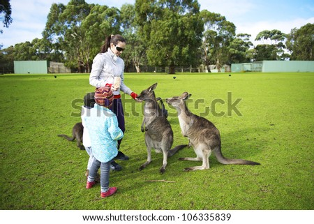 Family feeding kangaroos in Phillip Island Wildlife Park, Australia - stock photo