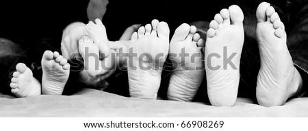 Family feet - stock photo