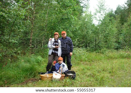 Family gathering mushrooms in the Estonian forest - stock photo