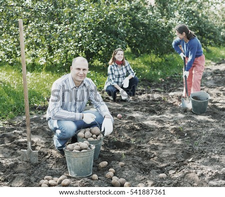 family harvesting potatoes in vegetable garden