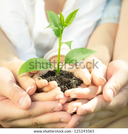Family holding young green plant in hands. Ecology concept - stock photo