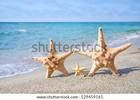 family holiday concept - sea-stars walking on sand beach against waves background - stock photo