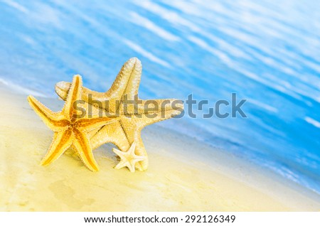 Family holiday concept - starfish walking on summer beach against sea background - stock photo