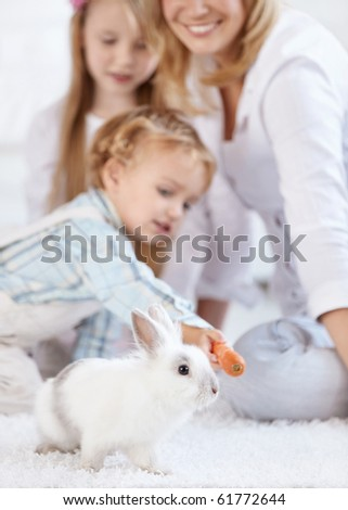 Family looks like a little boy feeding rabbit with carrot