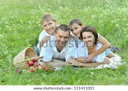 Family of four is having picnic in green summer park