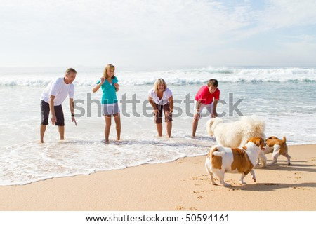 family of four playing with family dog on beach