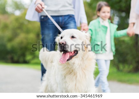 family, pet, domestic animal and people concept - close up of family with labrador retriever dog on walk in park - stock photo