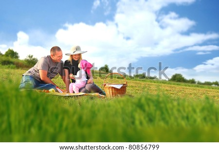 Family picnic fun - stock photo
