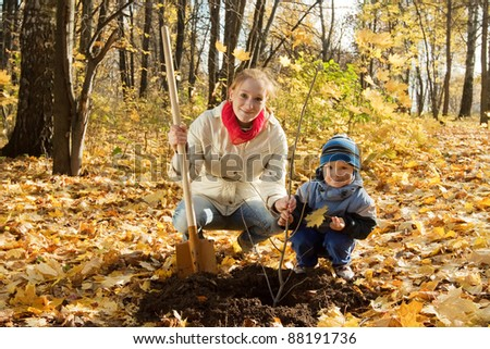 family planting tree with  spade outdoor in autumn - stock photo