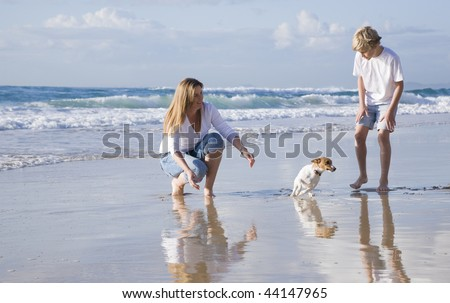 Family playing with dog on the beach