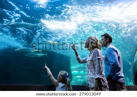 Family pointing a fish in a tank at the aquarium - stock photo