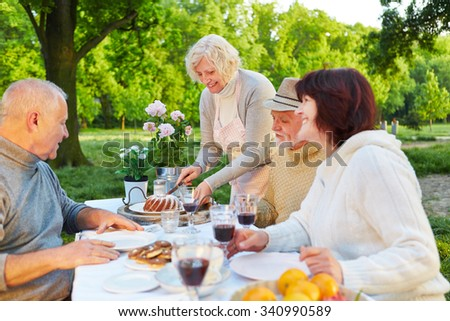 Family with senior people eating cake at birthday party in a garden - stock photo