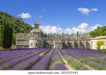 Famous Abbey of Senanque and lavender flowers. France. - stock photo