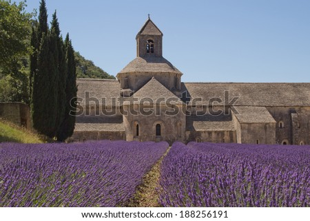 Famous Abbey Senanque with lavender field. (Provence, France)