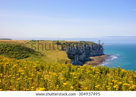 Famous chalk cliffs at Cote d'Albatre (Alabaster Coast) overgrown with wild yellow flowers. Etretat, France