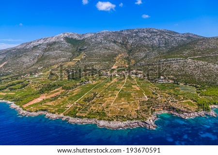Famous Croatian vineyards with Dingac grapes. Cultivated only on this small part of Peljesac peninsula near the sea in Dubrovnik archipelago. - stock photo