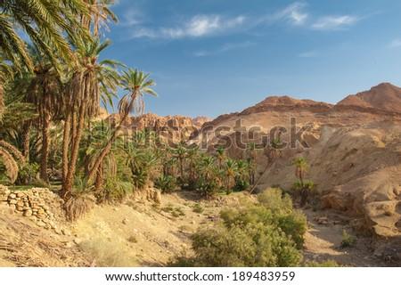 Famous Mountain oasis Chebika in Tunisia, Northern Africa - stock photo