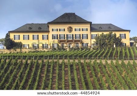 "famous palace ""Johannisberg Rheingau"" rhine river valley, Germany - stock photo"